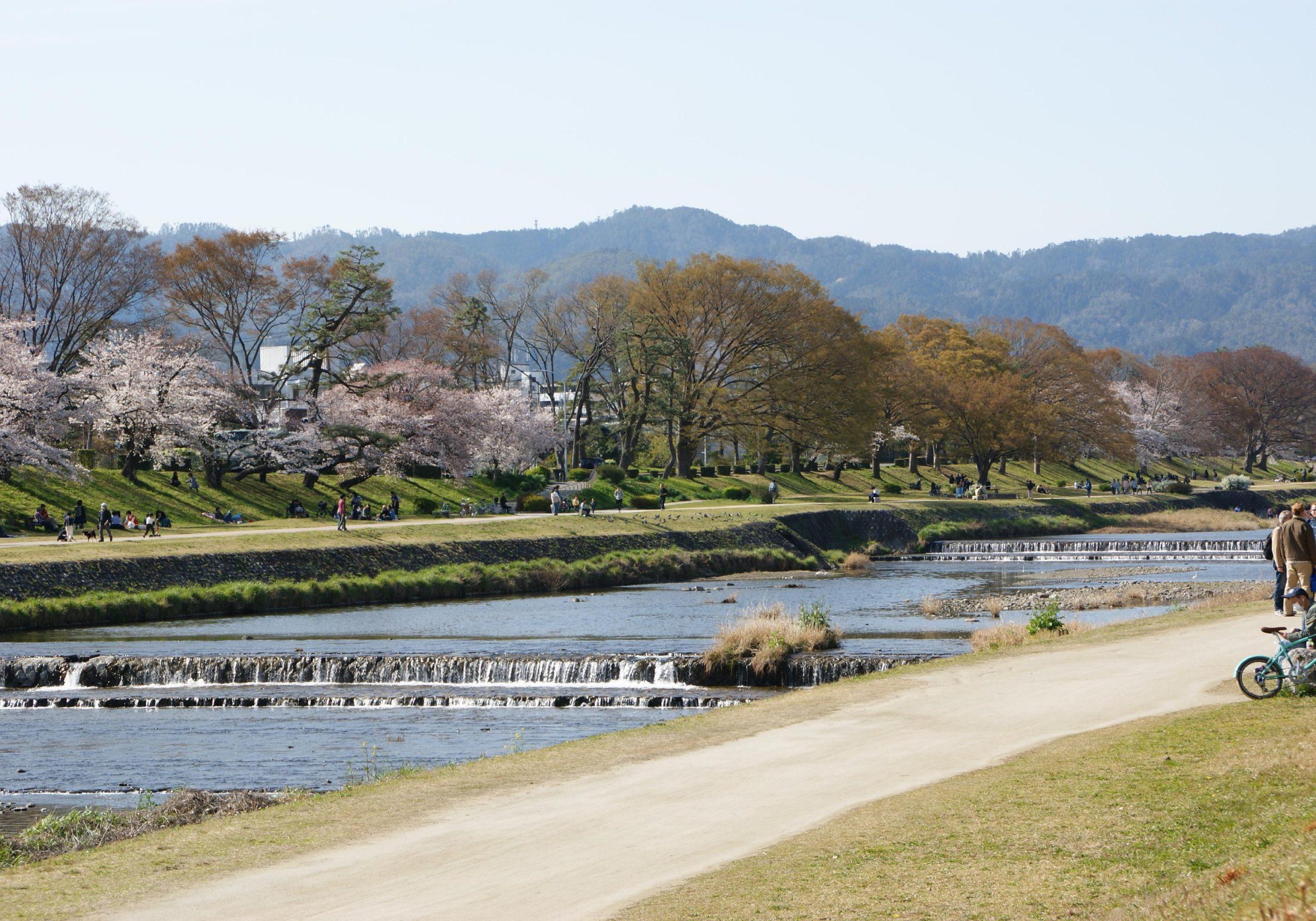 物件から徒歩10分の賀茂川。お散歩に最適です。